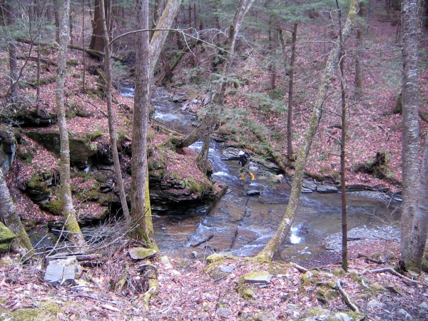 view into Hoxie Gorge